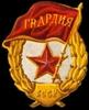 100-ая(1-ая гвардейская)стрелковая дивизия